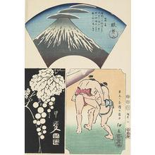 歌川広重: Suruga, Kai, and Izu, no. 5 from the series Harimaze Pictures of the Provinces - ウィスコンシン大学マディソン校