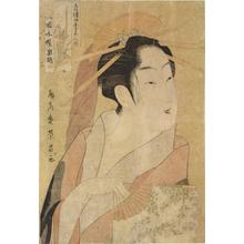 鳥高斎栄昌: The Courtesan Iwakoshi of the Okamoto Establishment, Summer from the series The Four Seasons and Beauties of the Licensed Quarters - ウィスコンシン大学マディソン校