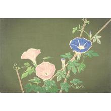 Kobayashi Kiyochika: Morning Glories - University of Wisconsin-Madison