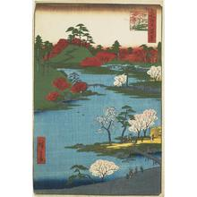 Utagawa Hiroshige: Cherry Blossoms at the Hachiman Shrine in Fukagawa, no. 59 from the series One-hundred Views of Famous Places in Edo - University of Wisconsin-Madison