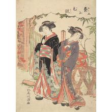 Kitao Masanobu: Two Geisha Strolling in a Garden, no. 3 from the series A Competition Among Geisha - University of Wisconsin-Madison