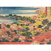 Katsushika Hokusai: Cherry Blossoms at Asuka in the Eastern Capital, from the series Snow, Moon, and Flowers at Famous Places - University of Wisconsin-Madison