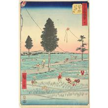 Utagawa Hiroshige: Totomi Kites, a Famous Product of Fukuroi, no. 28 from the series Pictures of the Famous Places on the Fifty-three Stations (Vertical Tokaido) - University of Wisconsin-Madison