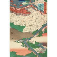 二歌川広重: Hasedera in Yamato Province, from the series One-hundred Views of Famous Places in teh Provinces - ウィスコンシン大学マディソン校