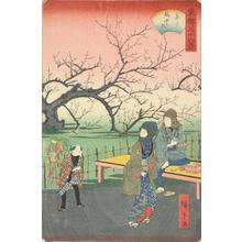 二歌川広重: The Plum Orchard at Kameido, from the series Thirty-six Views of the Eastern Capital - ウィスコンシン大学マディソン校
