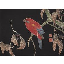 伊藤若冲: Red Parrot on Oak Branch, no. 5 from the series Six Genuine Pictures by Ito Jakuchu - ウィスコンシン大学マディソン校