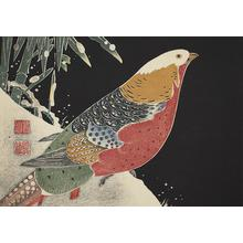 Jakuchu: Copper Pheasant, no. 1 from the series Six Genuine Pictures by Ito Jakuchu - University of Wisconsin-Madison
