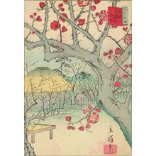 Utagawa Hiroshige II: Red plum blossoms at Yamamoto Omori, no.2 from the series Thirty-six Flowers at Famous Places in Tokyo - University of Wisconsin-Madison