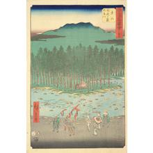 Utagawa Hiroshige: The Suzuka River and Foothills at Tsuchiyama, no. 50 from the series Pictures of the Famous Places on the Fifty-three Stations (Vertical Tokaido) - University of Wisconsin-Madison