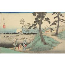 Utagawa Hiroshige: Listening to Insects at Dokan Hill, from the series Famous Places in the Eastern Capital - University of Wisconsin-Madison