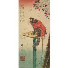 Utagawa Hiroshige: Monkey by a Cherry Tree - University of Wisconsin-Madison