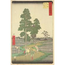 Utagawa Hiroshige: Yajiro Mistakes Kitahachi for a Fox and Beats him on the Nawate Road near Akasaka, no. 37 from the series Pictures of the Famous Places on the Fifty-three Stations (Vertical Tokaido) - University of Wisconsin-Madison