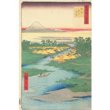Utagawa Hiroshige: Horie and Nekozane, no. 96 from the series One-hundred Views of Famous Places in Edo - University of Wisconsin-Madison
