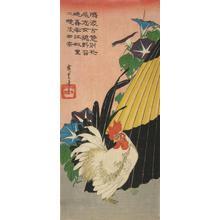Utagawa Hiroshige: Cock, Morning Glories and Umbrella - University of Wisconsin-Madison