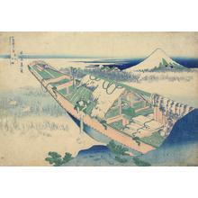 葛飾北斎: Ushibori in Hitachi Province, from the series Thirty-six Views of Mt. Fuji - ウィスコンシン大学マディソン校