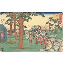 歌川広重: Flower Viewing at Asuka Hill, from the series Famous Places in Edo - ウィスコンシン大学マディソン校
