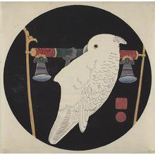 伊藤若冲: White Cockatoo on Perch, no. 4 or 6 from the series Six Genuine Pictures by Ito Jakuchu - ウィスコンシン大学マディソン校