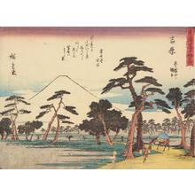 歌川広重: Yoshiwara, no. 15 from the series Fifty-three Stations of the Tokaido (Sanoki Half-block Tokaido) - ウィスコンシン大学マディソン校