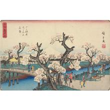 歌川広重: Cherry Trees in Full Bloom on the Koganei Embankment, from the series Famous Places in Snow, Moon, and Flowers - ウィスコンシン大学マディソン校