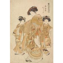 磯田湖龍齋: The Courtesan Karauta of the Ogi Establishment with Two Kamuro, from the series First Patterns of the Young Greens - ウィスコンシン大学マディソン校