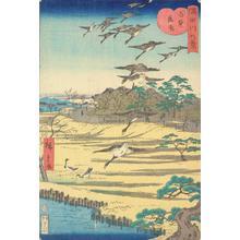 二歌川広重: Descending Geese at Shirahige, from the series Eight Views of the Sumida River - ウィスコンシン大学マディソン校