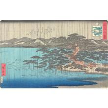 二歌川広重: Night Rain at Karasaki, from the series Eight Views of Omi Province - ウィスコンシン大学マディソン校