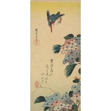 歌川広重: Kingfisher and Hydrangeas - ウィスコンシン大学マディソン校