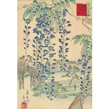 二歌川広重: No. 13. Wisteria at the Kameido Tenjin Shrine, no. 13 from the series Thirty-six Flowers at Famous Places in Tokyo - ウィスコンシン大学マディソン校