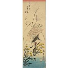 Utagawa Hiroshige: Crane, Ominaeshi, and Pampas Grass - University of Wisconsin-Madison