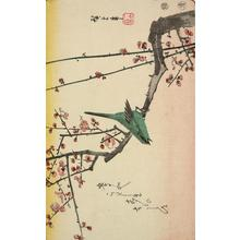 Utagawa Hiroshige: Warbler on a Plum Branch, from a series of Bird and Flower Subjects - University of Wisconsin-Madison