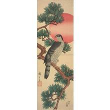 歌川広重: Goshawk, Pine, and Rising Sun - ウィスコンシン大学マディソン校