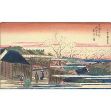 歌川広重: Cherry Trees at Dawn at the New Yoshiwara, from the series Famous Places in the Eastern Capital - ウィスコンシン大学マディソン校