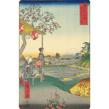 Utagawa Hiroshige: The Teahouse with a View of Mt. Fuji at Zoshigaya, no. 9 from the series Thirty-six Views of Mt. Fuji - University of Wisconsin-Madison