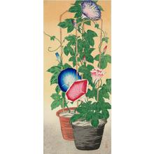 Takahashi Hiroaki: Potted Morning Glories - University of Wisconsin-Madison