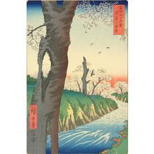 Utagawa Hiroshige: Koganei in Musashi Province, no. 12 from the series Thirty-six Views of Mt. Fuji - University of Wisconsin-Madison