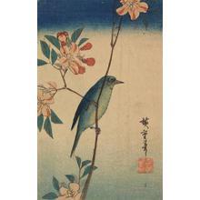 Utagawa Hiroshige: White-eye on Flowering Plum - University of Wisconsin-Madison