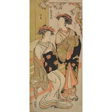 磯田湖龍齋: The Courtesans Tamazusa and Konomatsu of the Ieda (or Yata) Establishment, from the series First Patterns of Young Greens - ウィスコンシン大学マディソン校