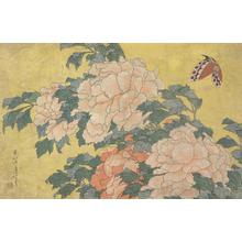Katsushika Hokusai: Butterfly and Peonies, from a series of Eleven Pictures of Insects, Birds, and Flowers - University of Wisconsin-Madison