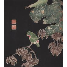 伊藤若冲: Green Parrot on Vine, no. 2 from the series Six Genuine Pictures by Ito Jakuchu - ウィスコンシン大学マディソン校