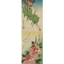 Utagawa Hiroshige: White-eyes and Gourds, Finch and Peonies, from a series of Bird and Flower Subjects - University of Wisconsin-Madison