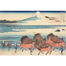 Katsushika Hokusai: Reclaimed land at Ono in Suruga Province, from the series Thirty-six Views of Mt. Fuji - University of Wisconsin-Madison