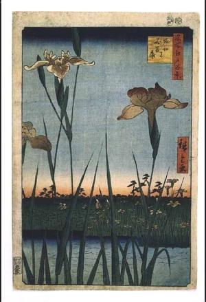 Utagawa Hiroshige: One Hundred Famous Views of Edo: Iris Garden at Horikiri - Edo Tokyo Museum