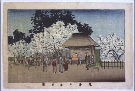 井上安治: True Pictures of Famous Places in Tokyo: Ume (Japanese apricot) Garden at Kameido - 江戸東京博物館