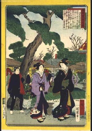 Utagawa Kuniaki: Famous Views of Modern Tokyo: In the Hana Yashiki Entertainment Garden in Asakusa - Edo Tokyo Museum