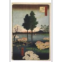 歌川広重: One Hundred Famous Views of Edo: Suwa Heights at Nippori - 江戸東京博物館