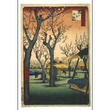 Utagawa Hiroshige: One Hundred Famous Views of Edo: Ume (Japanese apricot) Garden at Kamata - Edo Tokyo Museum
