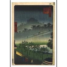 二歌川広重: One Hundred Famous Views of Edo: Evening View of the Paulownia Plantation at Akasaka in the rain - 江戸東京博物館