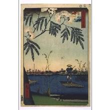 Utagawa Hiroshige: One Hundred Famous Views of Edo: Ayasegawa River and Kanegafuchi - Edo Tokyo Museum