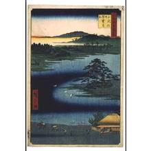 Utagawa Hiroshige: One Hundred Famous Views of Edo: The 'Robe Hanging Pine', Senzoku Pond - Edo Tokyo Museum