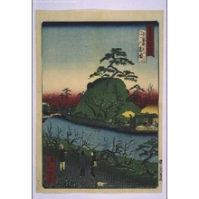 Ikkei: Forty-Eight Famous Views of Tokyo: Plum Blossom at Omuroi Park - Edo Tokyo Museum